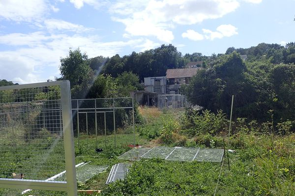 Début de l'installation d'enclos extérieurs pour accueillir les animaux.