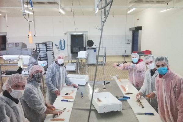 Apprentissage du filetage pour les nouveaux poissonniers formés en Brenne.