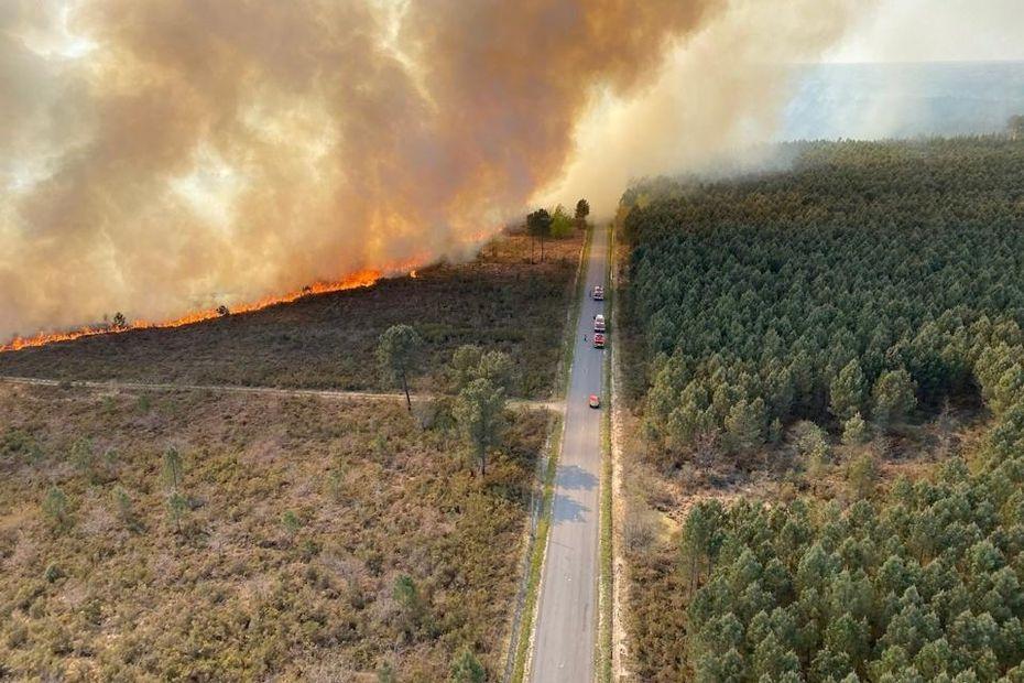 Charente-Maritime : Cent hectares de forêt partis en fumée à Cercoux