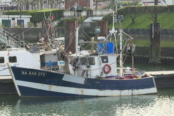 Moins de bateaux en pêche mais toujours du poisson à la criée de St-Jean-de-Luz au Pays basque