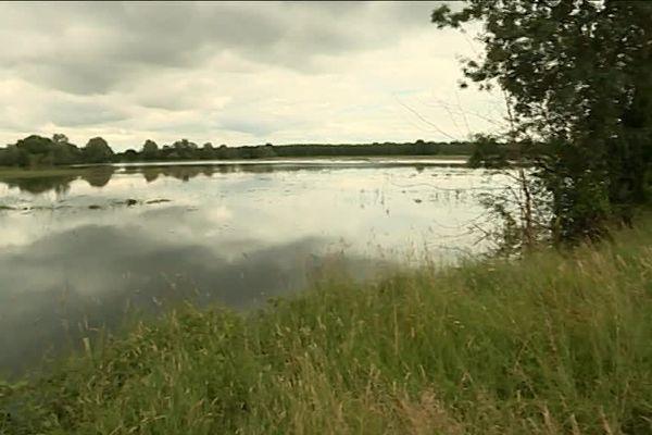 Des milliers d'hectares inondés dans les basses vallées angevines, c'est du fourrage perdu pour les éleveurs