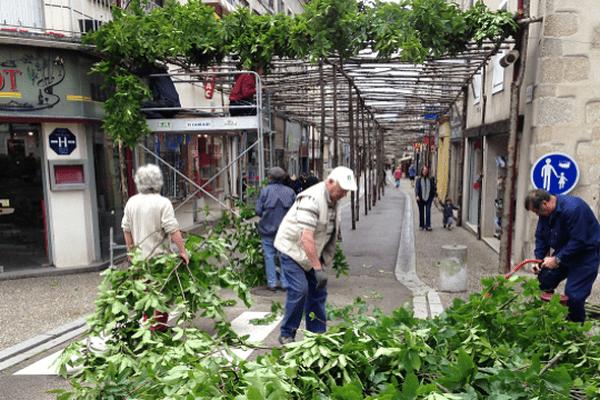 L'ancienne forêt de Comodoliac reproduite dans la rue Lucien Dumas de Saint-Junien