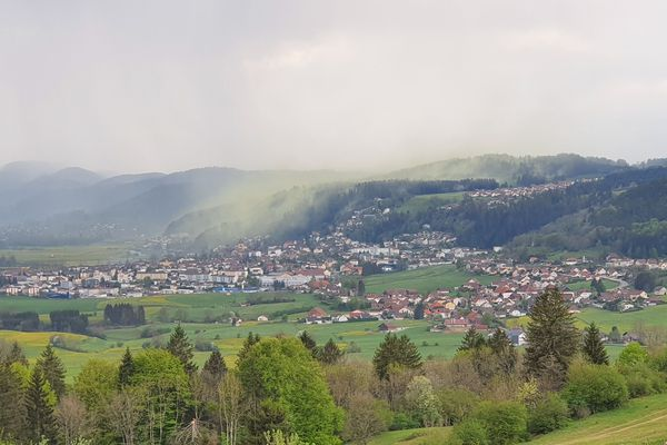 Les paysages du Haut-Doubs recouverts d'un nuage de pollen jaune