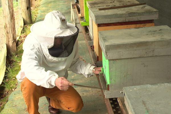 Jean-Christophe Lahontan auprès de ses ruches