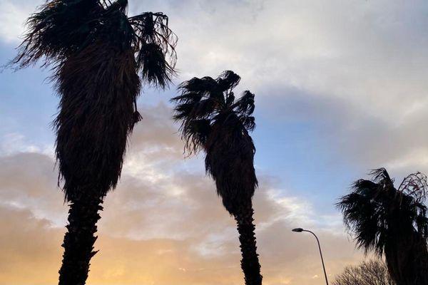 La vigilance vent violent est maintenue jusqu'e dans la nuit du samedi au dimanche 24 janvier.