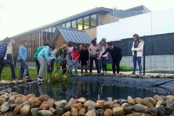 Les élèves devant la marre du collège entrain d'étudier la flore et la faune