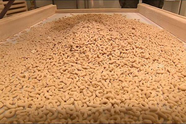 L'atelier fonctionne deux jour par semaine et fabrique 300 kg de pâtes, commercialisées dans des épiceries Bio ou en vente directe.
