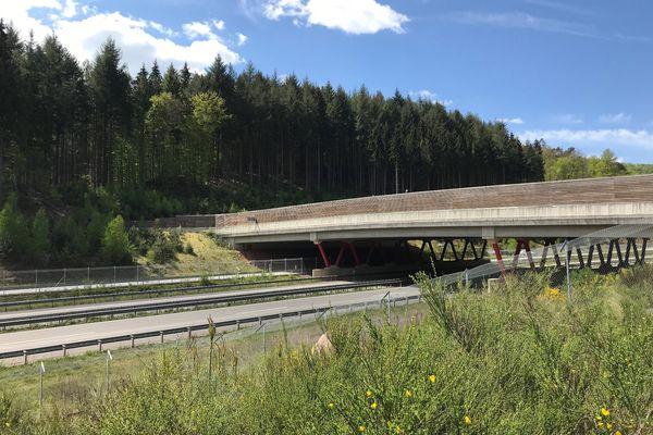 Ecopont dans le Palatinat près de Walmersbach qui enjambe la voie rapide B10