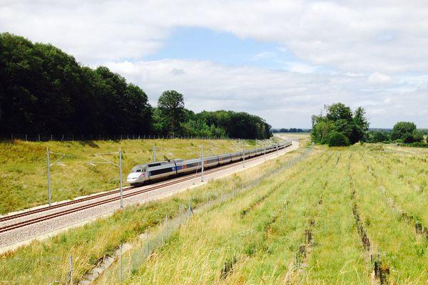 Un TGV emprunte la nouvelle ligne à grande vitesse au niveau de Coulans-sur-Gée. Son passage à plus de 300 km/h génère de fortes nuisances sonores, selon les riverains.