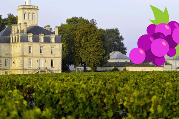 Testez vos connaissances en jouant à notre jeu sur la culture du vin et de la vigne.