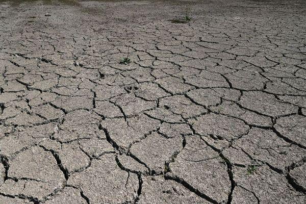 A compter du 28 juillet, l'ensemble du département de l'Allier est désormais placé en vigilance renforcée sécheresse.