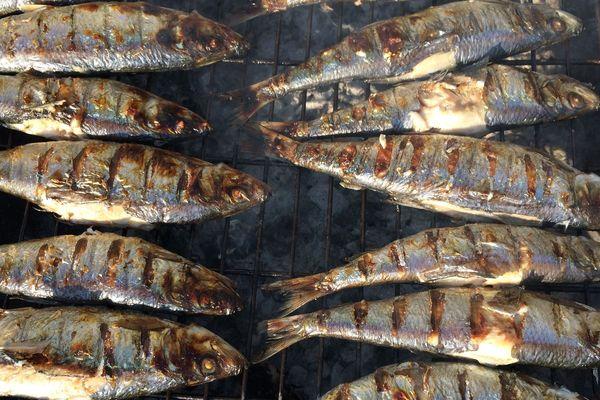 Harengs grillés à Dieppe pendant la 50ème foire aux harengs et à la coquille Saint Jacques