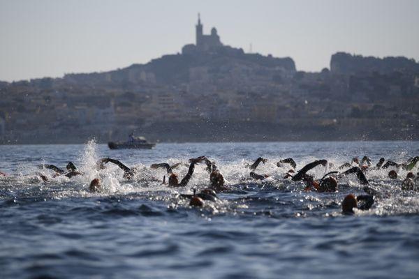 Les nageurs du Défi Monte Cristo de l'épreuve du 5km de l'édition de 2020