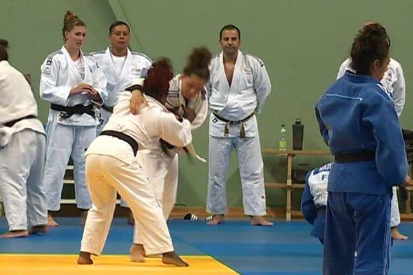 Montpellier : les équipes de France de judo féminin s'entraînent pour les mondiaux