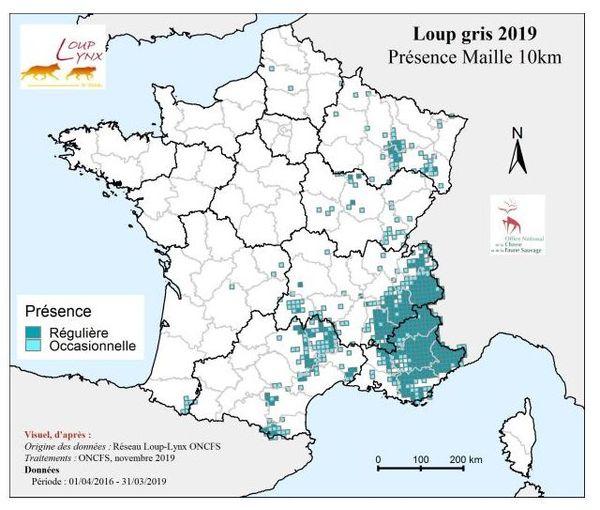 La répartition du loup sur le territoire français.