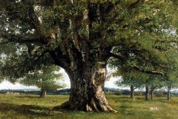 Il est cher... Au coeur des Francs-Comtois. Le chêne de Flagey, oeuvre du peintre Gustave Courbet, a été acheté grâce à une souscription qui a réuni l'Etat, la région, le département du Doubs, des entreprises et des particuliers.