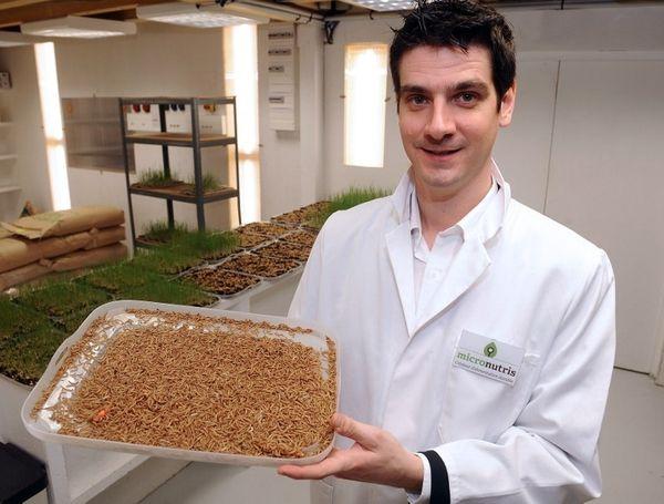 Cédric Auriol, fondateur de Micronutris