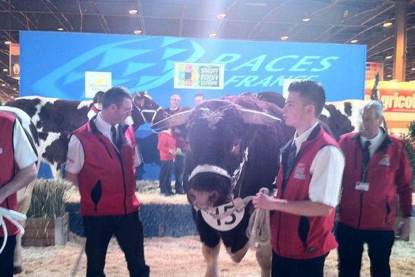 La taureau Fêtard monte sur le podium.