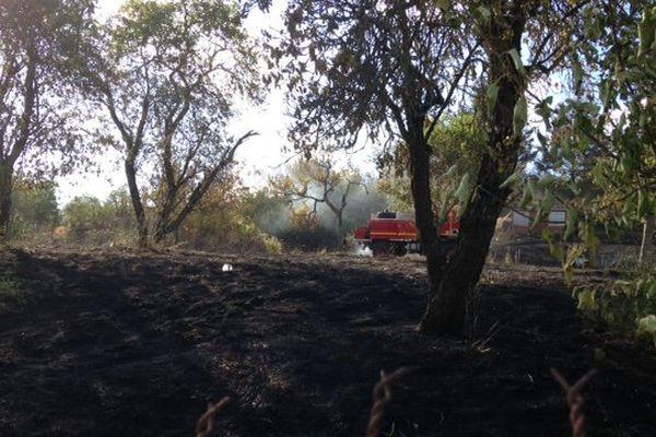 Un autre incendie s'est déclaré à Plombières-lès-Dijon au bord des voies SNCF, ce lundi 20 juillet 2015.