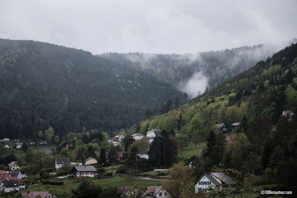 La vallée de la Mossig est arborée de superbes pins.