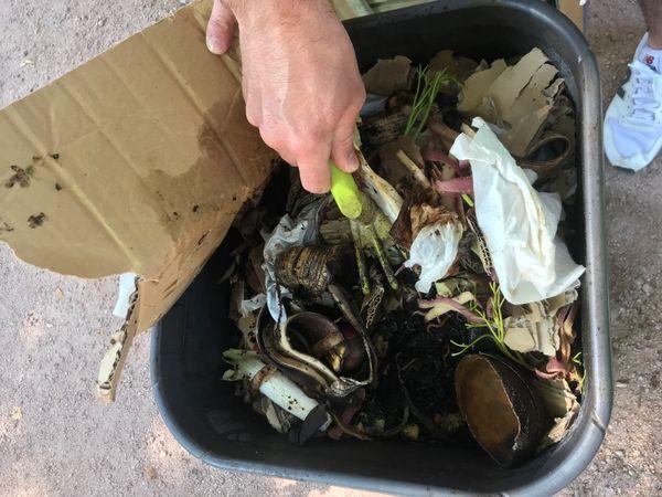 Pour faire son compost, il faut varier les déchets mous et humides et les déchets durs et secs.