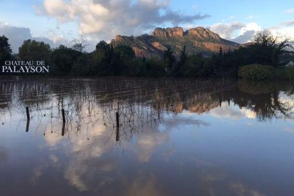 Le fleuve Argens est sorti de son lit ce jeudi matin sur la commune de Roquebrune-sur-Argens.