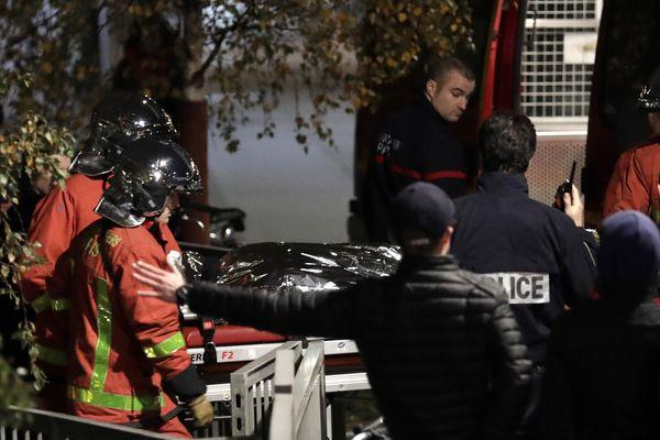 Le corps du tigre abattu à Paris XVe évacué par les forces de sécurité.