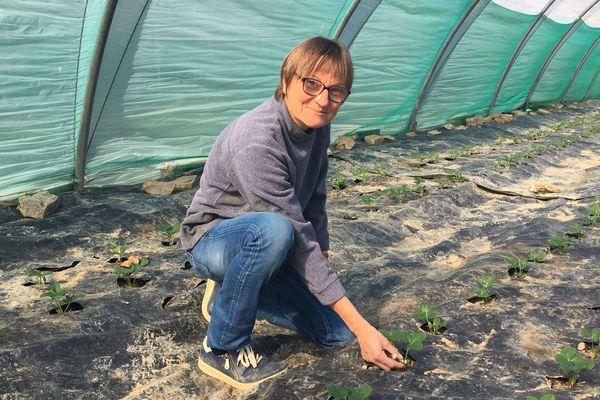 Si les fraises Cirafine seront mûres après le confinement du COVID-19, Elisabeth Plantive envisage la prise de commandes en ligne et la livraison en porte à porte pour remplacer les marchés