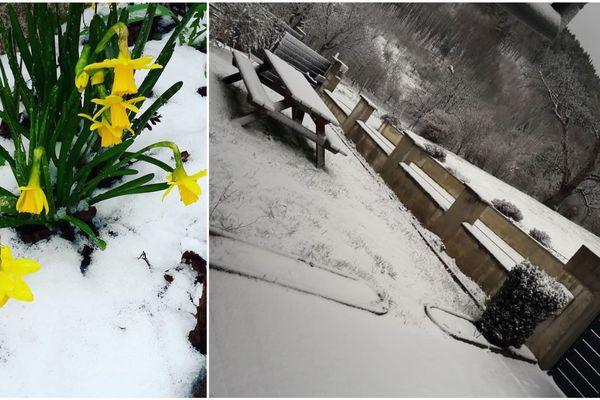 """Cinq centimètres de neige ont recouvert le jardin de ce particulier à Maisonsgoutte (Bas-Rhin). Il songe que """"Dame Nature hésite encore entre le printemps et l'hiver""""."""