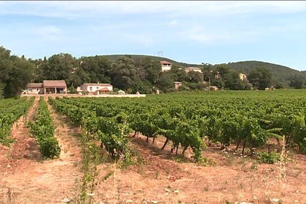 Dans le Var, beaucoup de parcelles de vignoble se situent en zones périurbaines, ce qui rendrait encore plus difficile les nouvelles normes d'épandage.