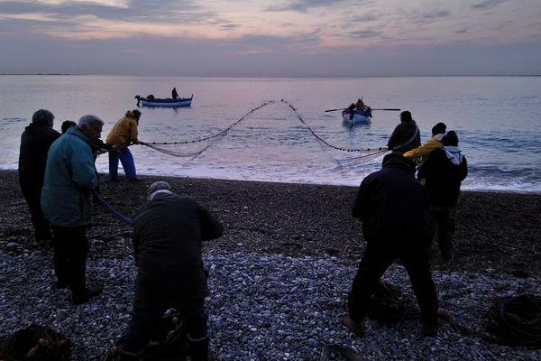 La poutine est pêchée à la senne de plage au Cros-sur-Cagnes.