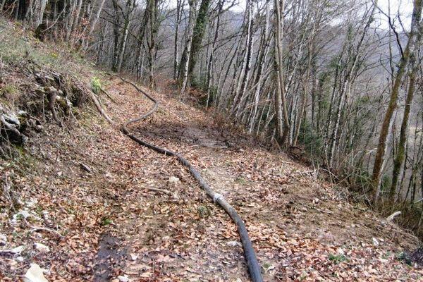 Vaufrey : pollution du Doubs à cause d'un agriculteur suisse