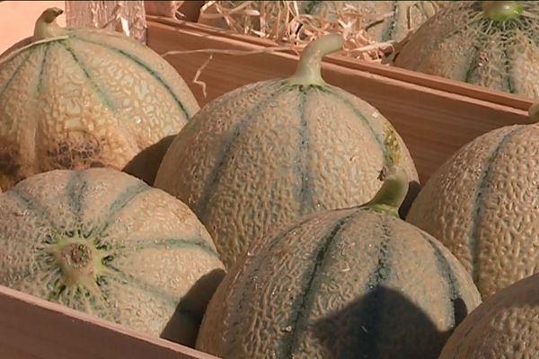 Traditionnelle foire aux melons à Boulaincourt. Et comme chaque année elle attire de nombreux visiteurs !