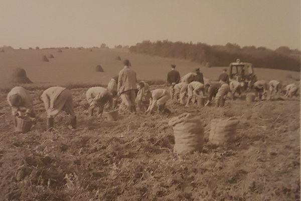 La particularité de l'asile de Clermont au XIXème et début du XIXème siècle : des colonies agricoles dans lesquelles les malades travaillaient.