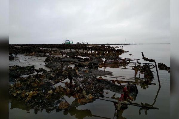 Tables en ferraille, poches plastiques, coquilles d'huitres issues de parcs ostréicoles abandonnés entravent une partie du bassin côté Cap-Ferret. Un vaste programme de nettoyage est en cours.