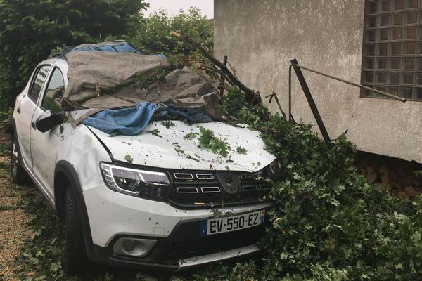 Une voiture sous les branches, après un orage, à Soisy-sur-Seine, en Essonne.