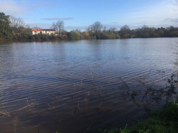 C'est la montée des eaux du marais qui a provoqué les inondations à Villeneuve-en-Retz.