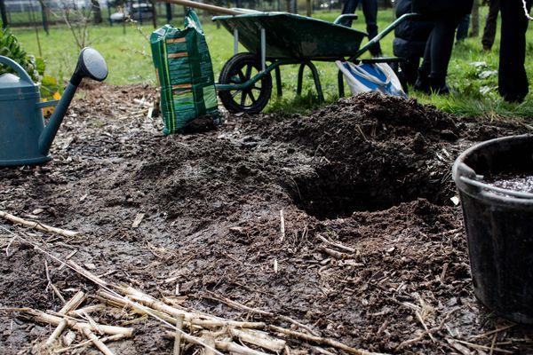 Un potager en permaculture