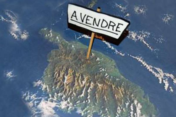 Territoriales : des associations de défense de l'environnement interpellent les candidats