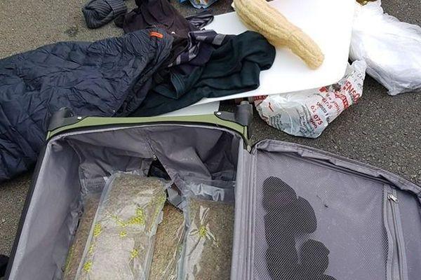 2,3 kg d'herbe de cannabis étaient dissimulés dans la valise du voyageur d'un Flixbus intercepté sur l'A709 dans l'Hérault