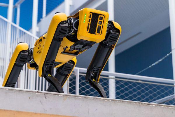 SCAR le robot chien de l'Ecole des Mines à Nancy