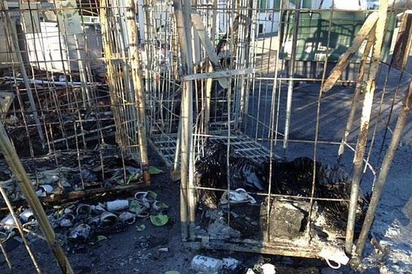 Elne (Pyrénées-Orientales) - les locaux de la blanchisserie BIC après l'incendie - 6 janvier 2015