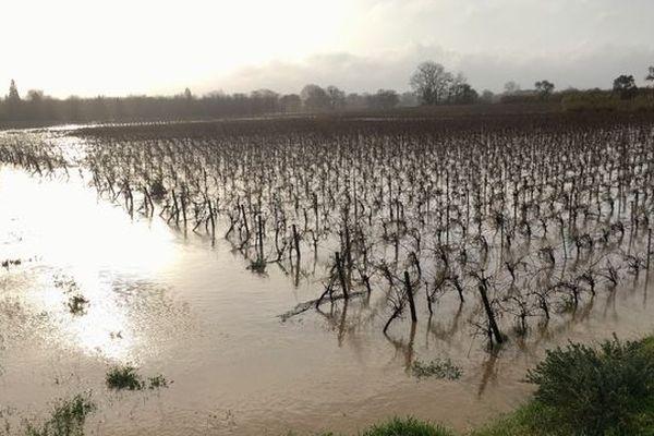 A Coursan, dans l'Aude les vignes empêchent l'eau d'accéder au village - 23 janvier 2020