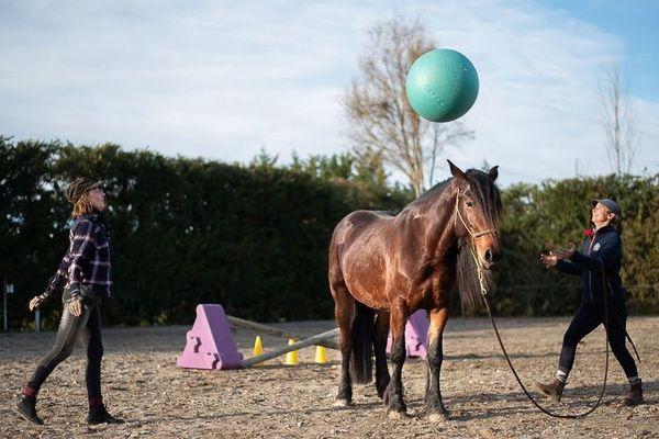 Le travail de Charlotte Barrau porte sur la relation de confiance mutuelle entre l'homme et son cheval.