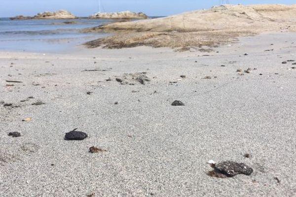 Des boulettes d'hydrocarbure se sont déposées sur le sable.