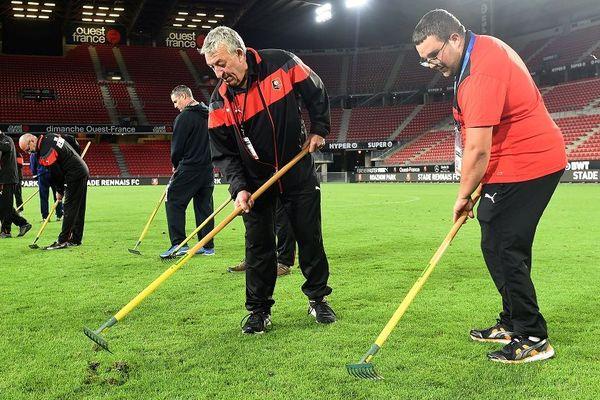 """Des jardiniers du Stade Rennais remettent en place des """"chiquettes"""", petites mottes de pelouse pendant le match Rennes - PSG le 18 août 2019."""