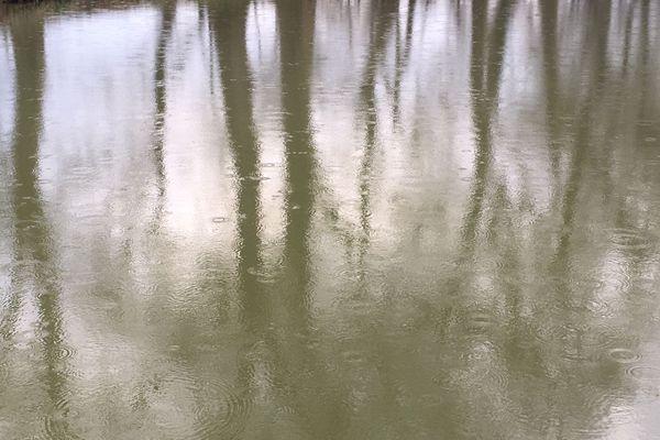 Les gouttes de pluie forment des ronds sur l'eau du canal du Midi en Occitanie.