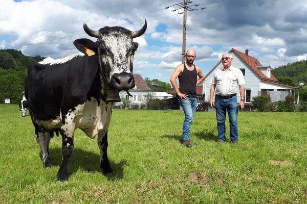 Le lait des Vosgiennes de Mathieu Hunzinger (en débardeur noir) sera valorisé grâce à une idée astucieuse de Patrick Althusser, le maire de Muhlbach-sur-Munster
