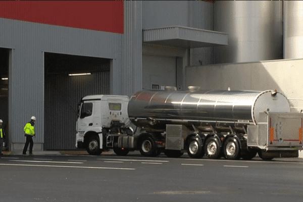 Les premiers litres de laits bretons livrés à l'usine Synutra