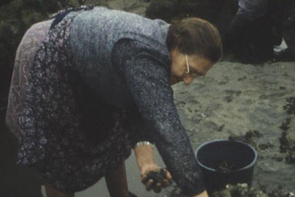 Regardez ce beau portrait d'une moulière d'Equihen, un reportage du 1er septembre 1973